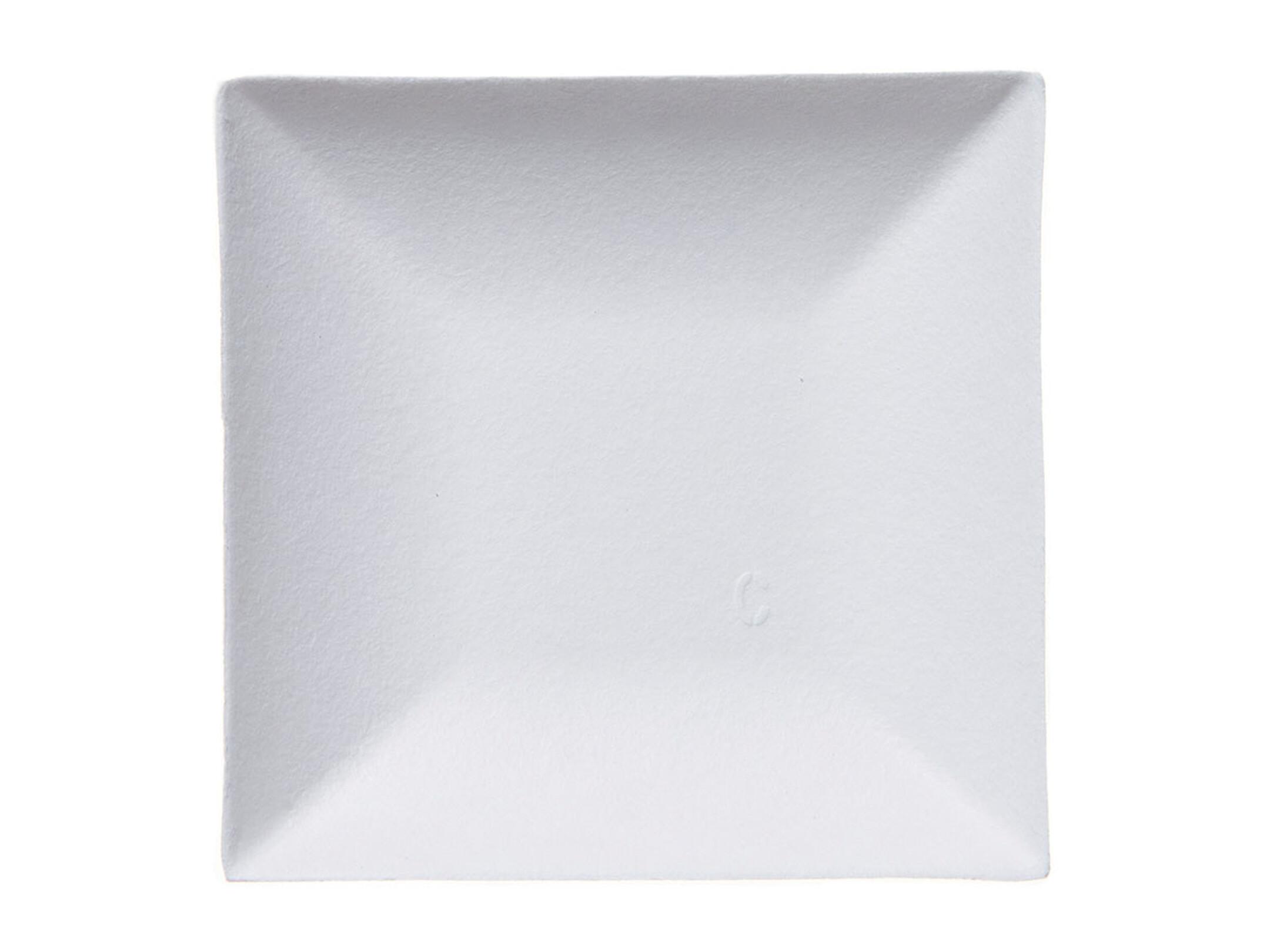 Teller Pappteller Einwegteller Pappe eckig 26 cm x 26 cm